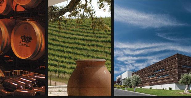 Merino_winery