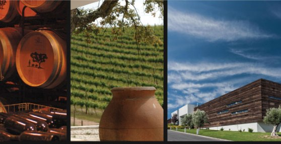 Merino_winery