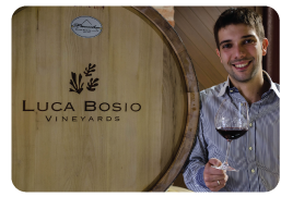 Luca Bosio, winemaker
