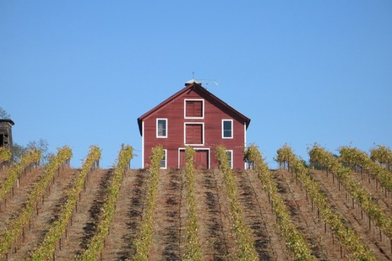 Peterson red barn Sonoma