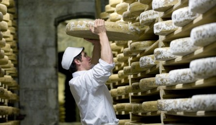 Comté Cheese Production