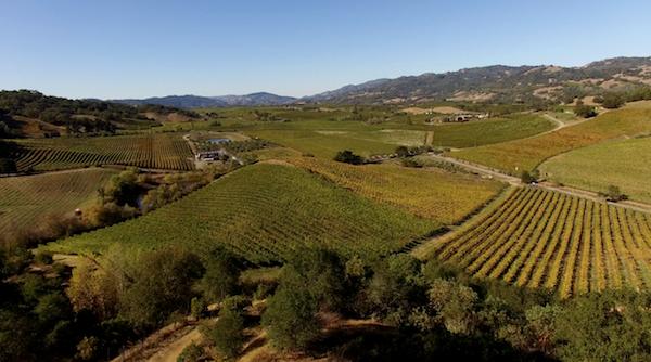 Napa Valley Goldschmidt Vineyards