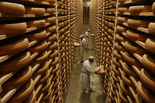 Comté Production