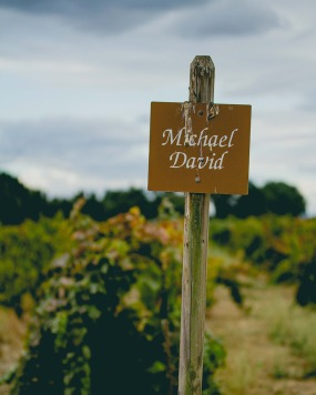 Photo by Michael David Winery: Vineyard