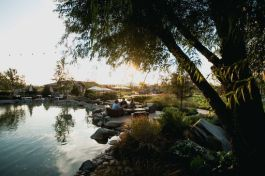 Photo by Michael David Winery: Pond at Sunset