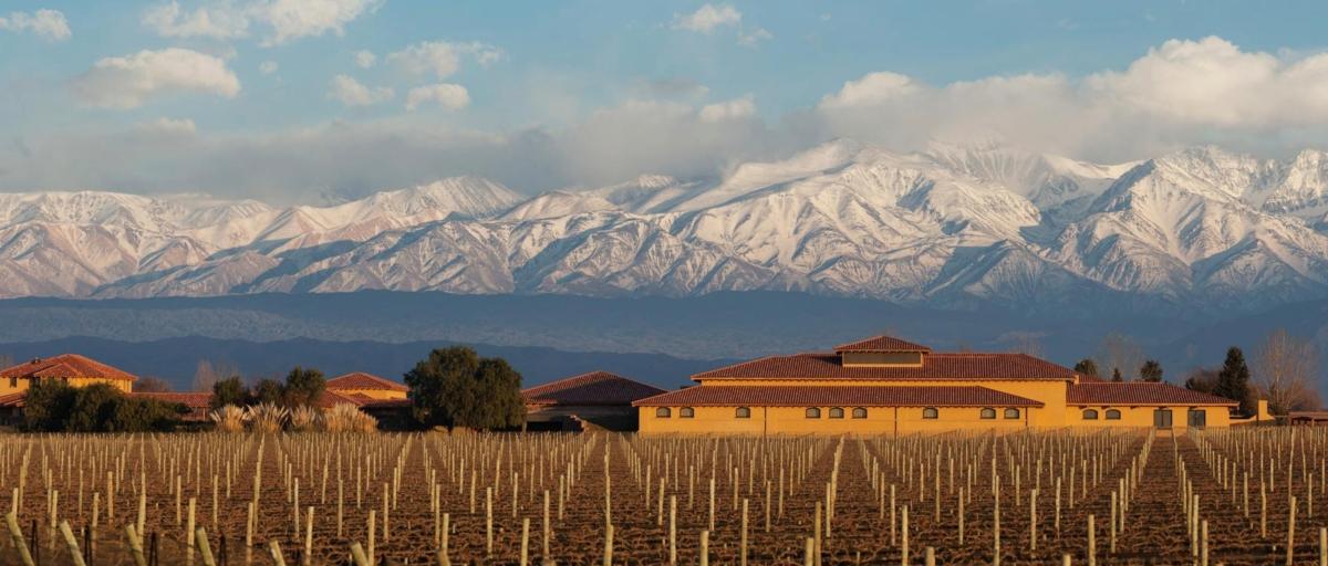 winery-landscape-large