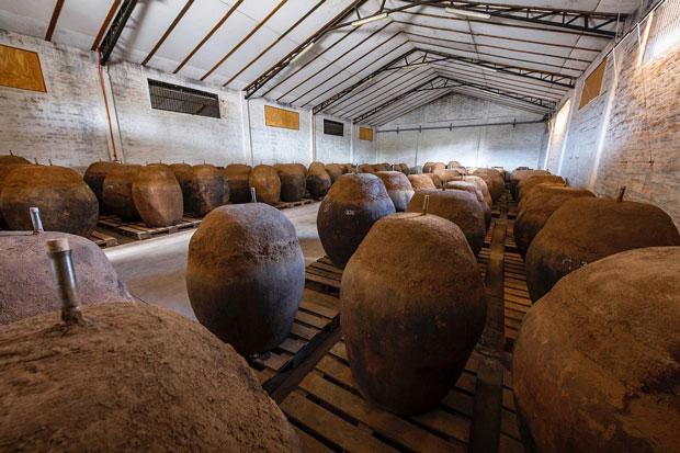 De Martino Terracotta wine vessels